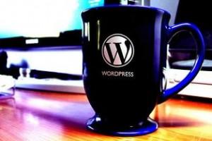 novo-wordpress-8-beta2-300x200 9 целей начинающего блоггера