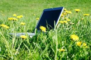 clip5731 Реальные взгляды на работу в интернете.