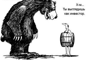 """c29310118894 Финансовый кризис! И пришел """"медведь-инвестор"""""""