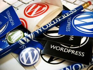 Luchsiy-Dvizhok-Dlya-Bloga WordPress – CMS для блогов и сайтов