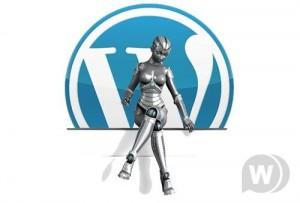 1294200351_4_thumb1-300x203 5 самых необходимых плагинов для бизнес блога на Wordpress