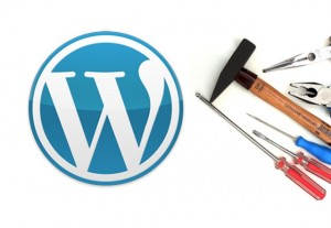WP-Settings-300x207 Первоначальная настройка Wordpress