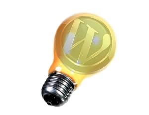 wordpress-formy-300x232 6 плагинов для Wordpress, которые позволят удержать читателей на блоге и анализировать их действия
