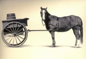 b7472ed52f_370-300x208 Не ставьте телегу впереди лошади, особенно в бизнесе