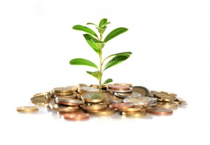 25095-300x207 Инвестиционный бизнес: полезные факты
