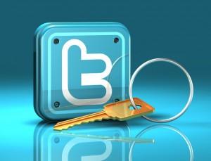 Twitter_Security-300x229 Twitter-аккаунт и его продвижение