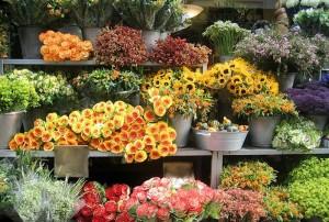 det3-300x202 Как правильно организовать торговлю цветами?