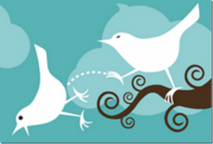 HLG_Twitter_Fired_thumb-300x204 Как удалить не взаимных читателей в Твиттере?