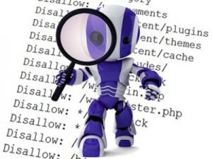 Robots.txt1_-300x225 Файл robots.txt для Яндекса и всех, всех всех