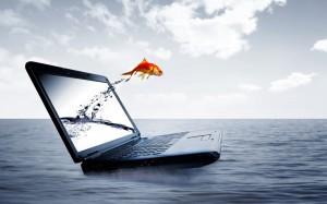 Computers_Laptop_and_fish_021038_-300x187 Как создать серьезный интернет проект: Подготовка. Часть1