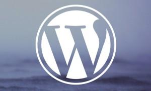 post-cover-image-53735a6335e4a-300x182 Платформы для блогов. Что такое CMS WordPress?