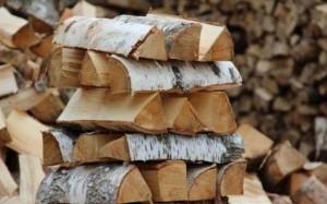 ubil_polenom-300x187 Организация бизнеса на продаже дров